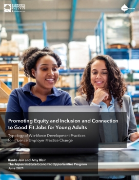 Promoting Equity and Inclusion and Connection to Good Fit Jobs for Young Adults: Typology of Workforce Development Practices to Influence Employer Practice Change